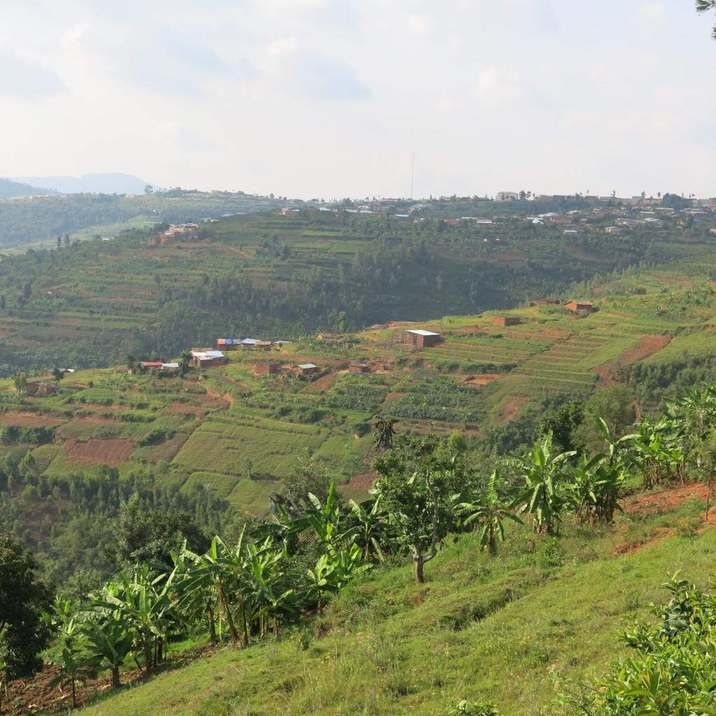 Rwanda's hills