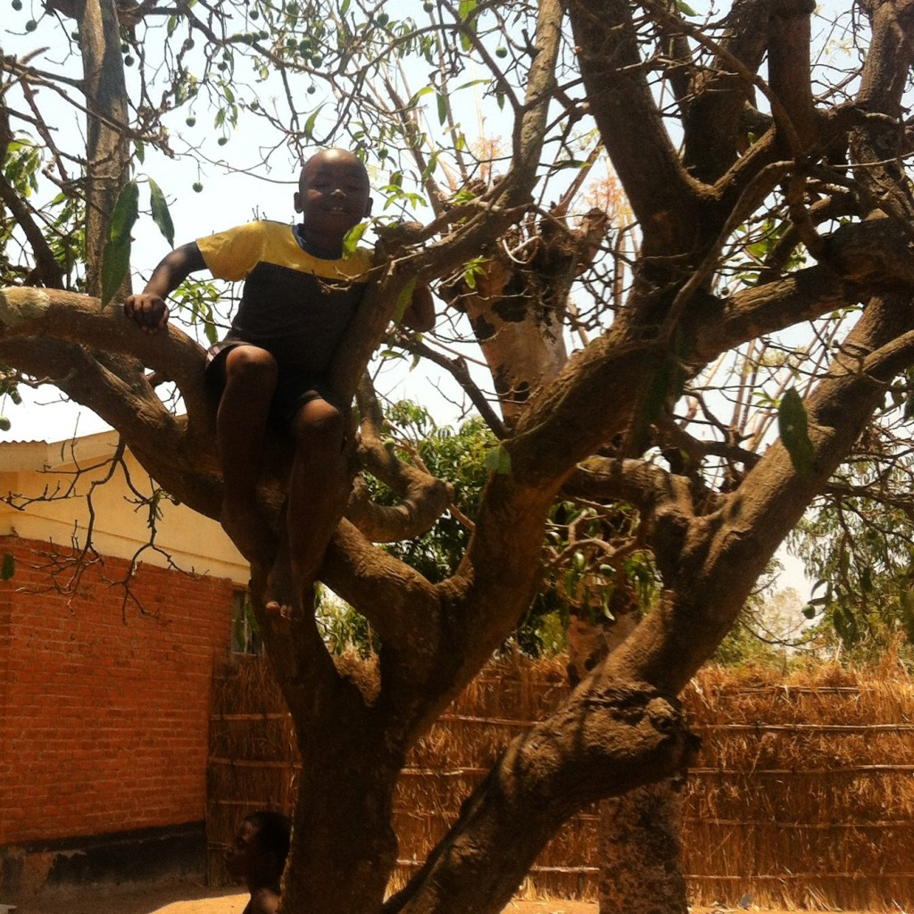 Malawi Child in Tree
