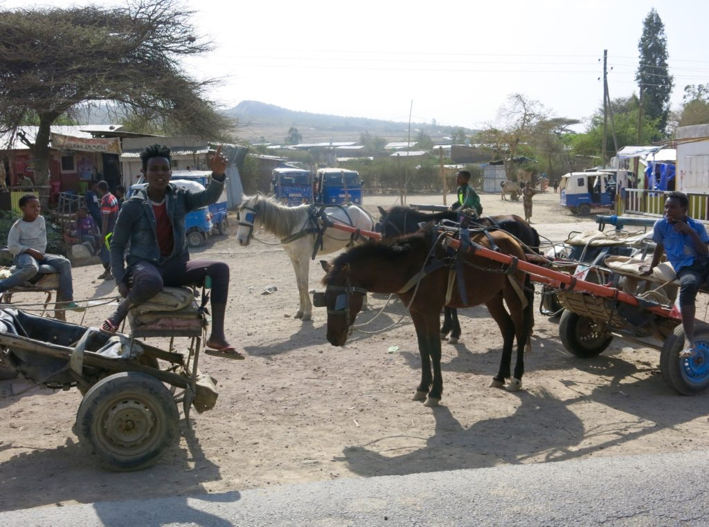 Adama horse cart